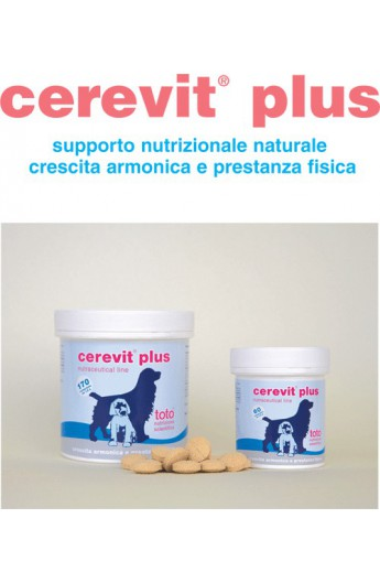 Toto - Cerevit Plus