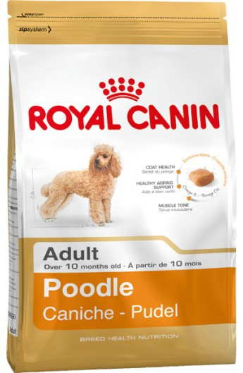 Royal Poodle