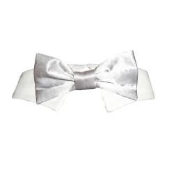 Papillon con collo Bow Tie