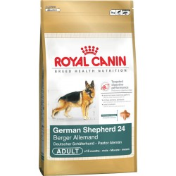 Royal German Shepherd Adult