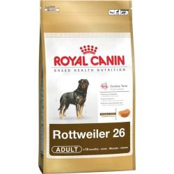 Royal Rottweiler