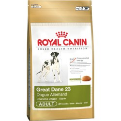 Royal Great Dane