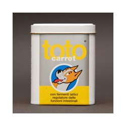 Toto - Carrot fermenti lattici