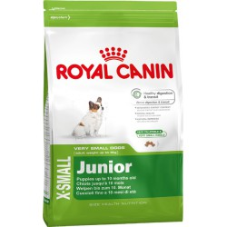 Royal X-Small Junior