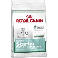 Royal Mini Starter