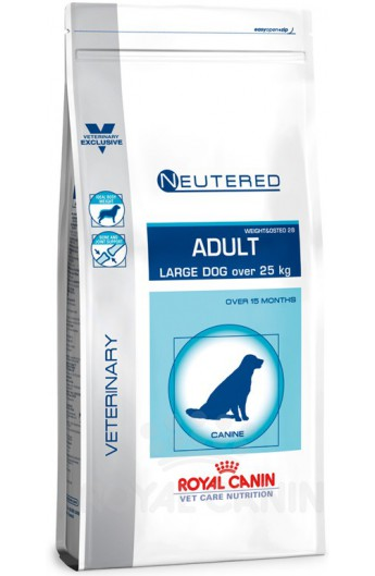 Royal Neutered Adult
