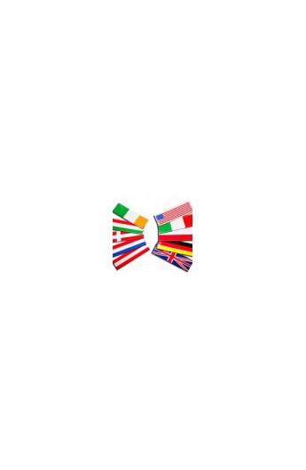Julius K9 coppia etichette bandiera cm.11 x 3