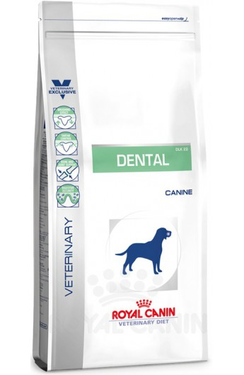 Royal Maxi Dental