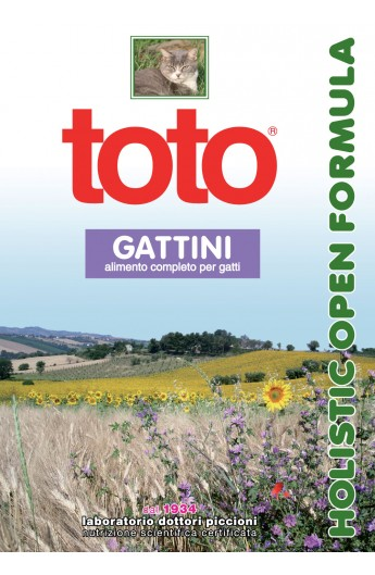 Toto gatto Holistic gattini
