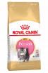 Royal Canin razze Kitten Persian