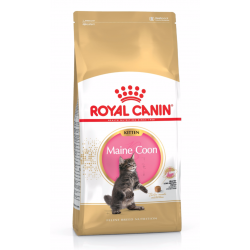 Royal Canin razze Kitten Maine Coon
