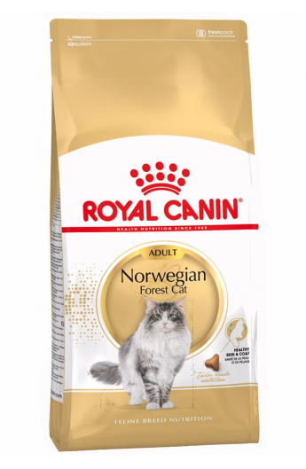 Royal Canin razze Norwegian Forest Cat