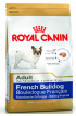 Royal Bulldog Francese Adult