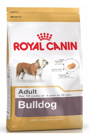 Royal Bulldog Adult