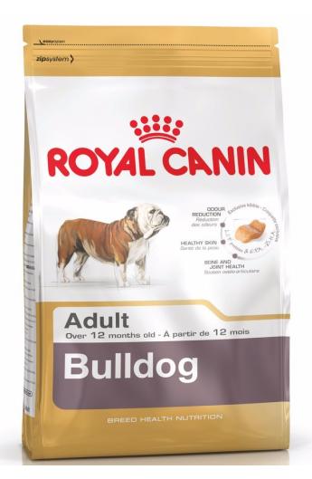 Royal Bulldog Adult