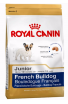 Royal Bulldog Francese Junior