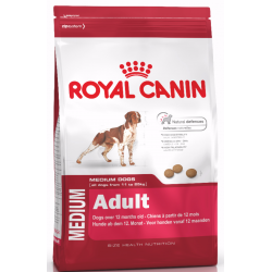 Royal Medium Adult