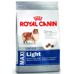 Royal Maxi Light