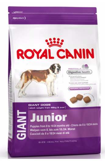 Royal Giant Junior
