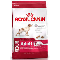 Royal Medium Adult 7+