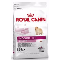 Royal Indoor Life Junior S