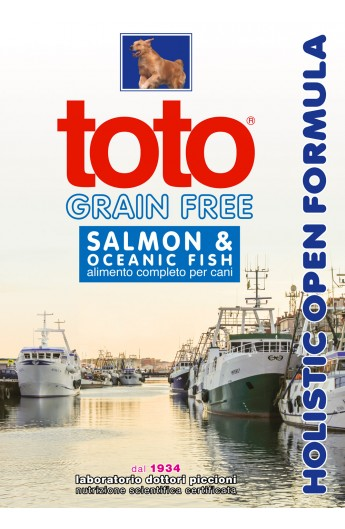 Toto Holistic Grain Free - Salmon e Potato mini