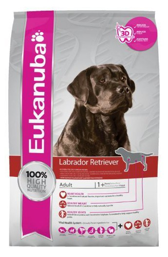 Eukanuba Adult Labrador Retriever