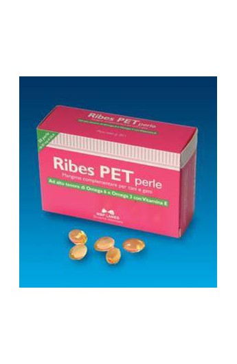 NBF Ribes Pet
