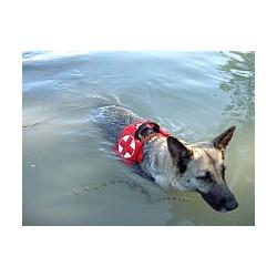 Coppia di galleggianti per pettorina Julius K9 soccorso