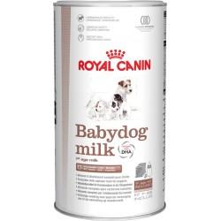 Royal Babydog Milk