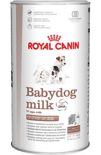 Royal Babydog Milk