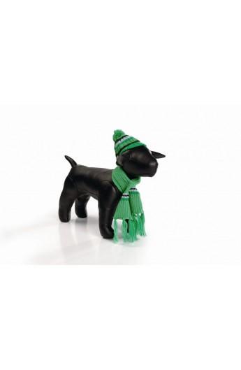 Cappello e sciarpa Winterset (0765930)